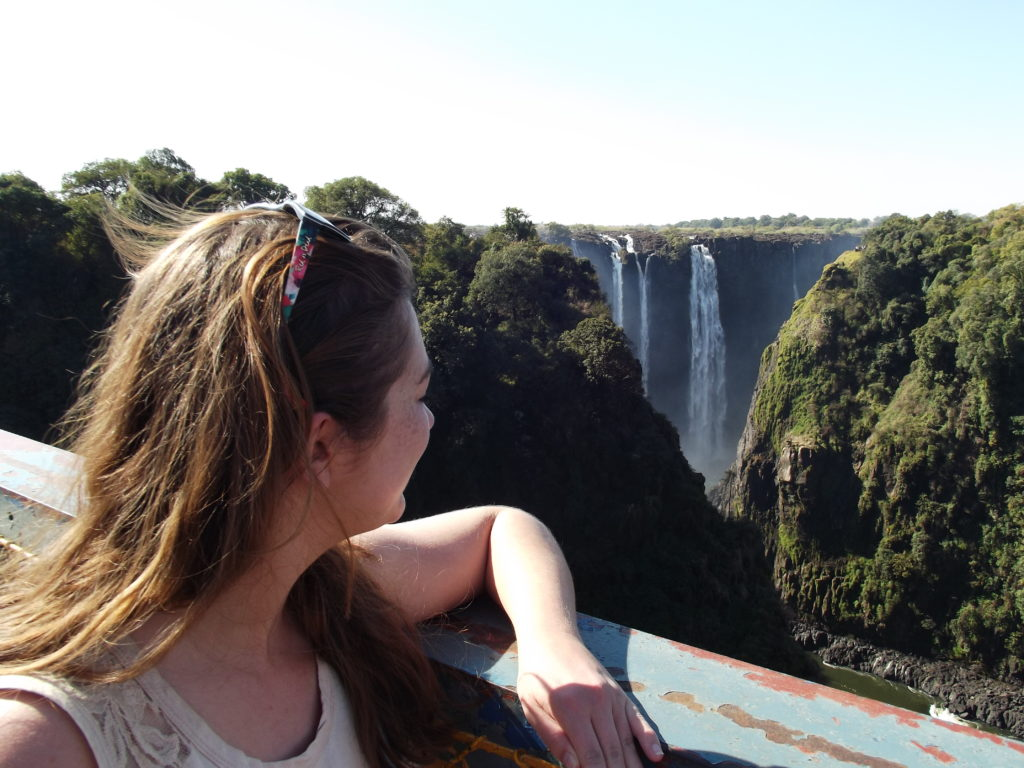 Victoria Falls: When Baboons Attack
